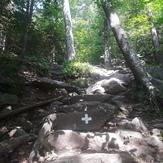 White Cross trail, Mt Monadnock, Mount Monadnock