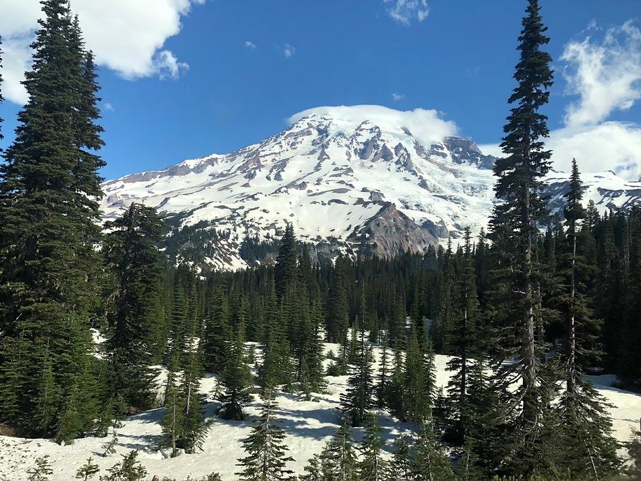 Mt Rainier in June, Mount Rainier
