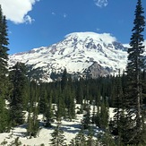 Mt Rainier in June, Mount Rainier