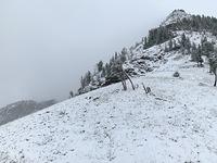 Albright Peak in September photo