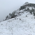 Albright Peak in September