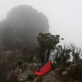 1st Arrow, Bluff Knoll