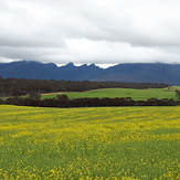 Stirling Range, Bluff Knoll