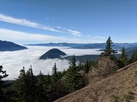 The foggy gorge, Dog Mountain photo