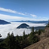 The foggy gorge, Dog Mountain