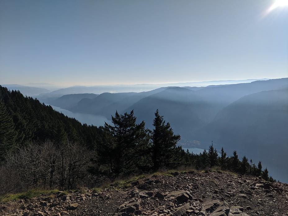 Standing on Puppy Summit, Dog Mountain