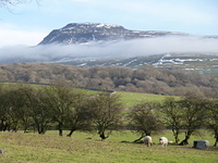 View from St Oswalds, Ingleborough photo