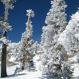 snow, Mount Baldy (San Gabriel Range)