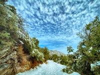 The Old Wilson Road, Mount Wilson (California) photo