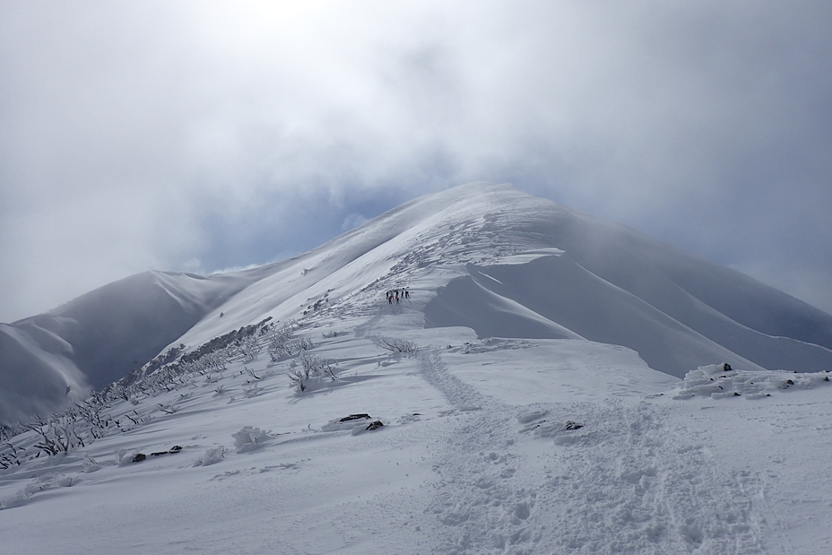 Journey to the summit, Mount Feathertop