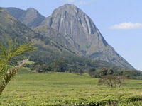 Mulanje Massif from Mulanje photo