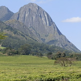 Mulanje Massif from Mulanje