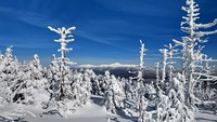 View of the Presidential range from near North Twin, North Twin Mountain (New Hampshire) photo