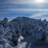 South Twin, South Twin Mountain (New Hampshire)