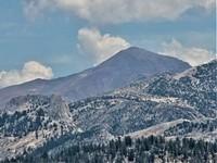 Mt. Dana, Mount Dana photo
