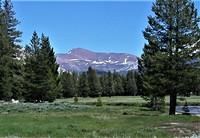 Mt. Gibbs and Tuolumne Meadows, Mt Gibbs photo