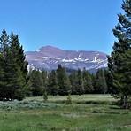 Mt. Gibbs and Tuolumne Meadows, Mt Gibbs