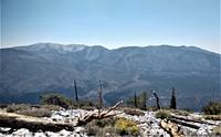 Anderson Peak (San Bernardino Mountains) photo