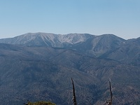 Jepson and San Gorgonio, Jepson Peak photo