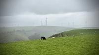 Approaching Mynydd y Glyn photo