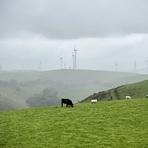 Approaching Mynydd y Glyn