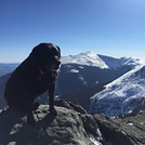 Views from the summit