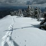 Summit ridge on mount Crickmer