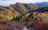 Mt Bunagatake Autumn, Mount Bunagatake photo