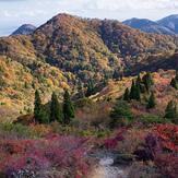Mt Bunagatake Autumn, Mount Bunagatake