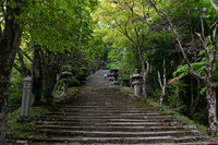 Steps to Atago Shrine, Mount Atago photo