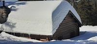 CCC hut Mt. Spokane, Mt Spokane photo