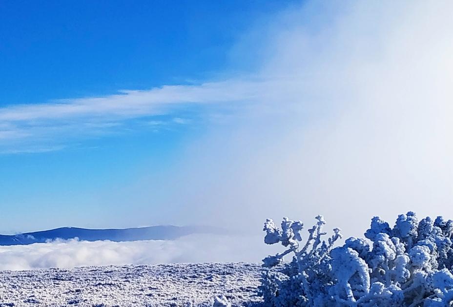 Králický Sněžník weather
