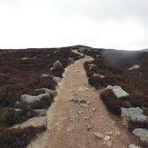 Trail, Two Rock