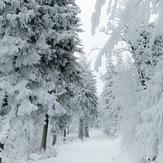 Zima w gorach Sowich., Wielka Sowa