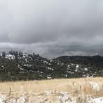 Snow - November 2019 near Figueroa Mtn., Figueroa Mountain