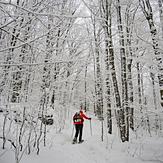 Winter Wonderland on trail to Mt. VanHoevenbery, Adirondacks, NY, Mount Van Hoevenberg