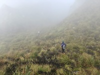 Peak Terrain, Mount Apo photo