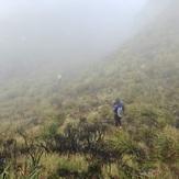 Peak Terrain, Mount Apo