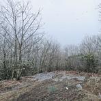 Snow on Springer Mountain, southern terminus of the Appalachian Trail