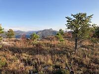 Shortoff Mountain photo