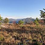 Shortoff Mountain