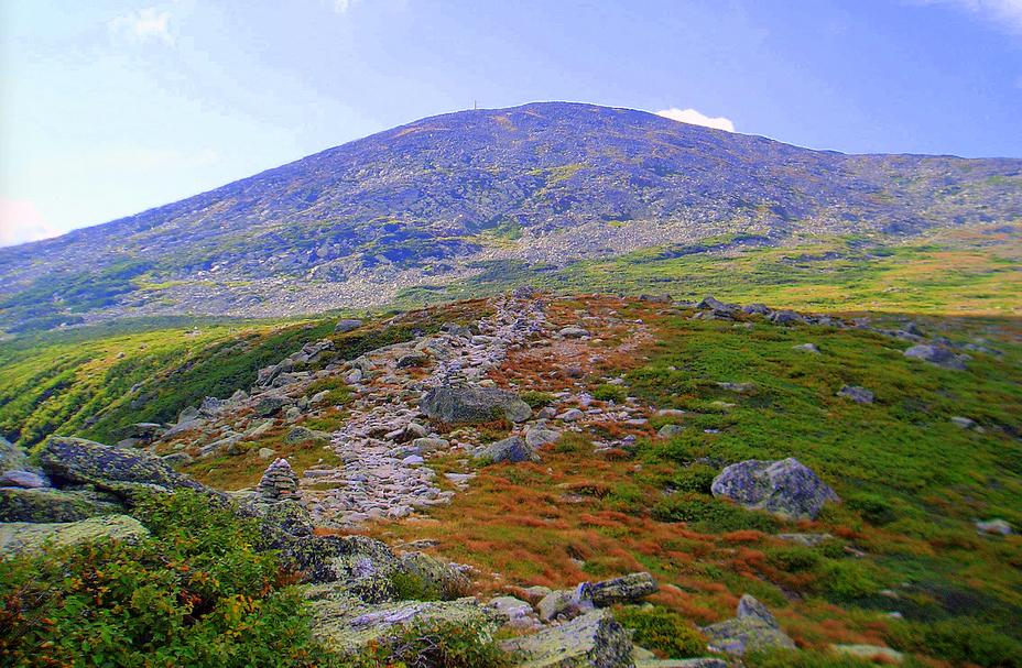 Mt. Washington from Alpine Garden, Mount Washington (New Hampshire)