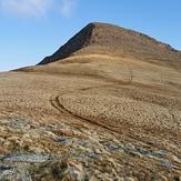 Wales mountain, Yr Elen