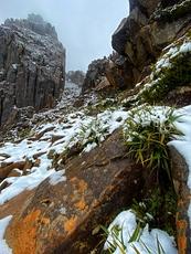 Summer Snow, Mount Ossa photo