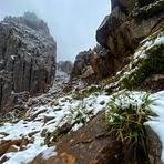Summer Snow, Mount Ossa