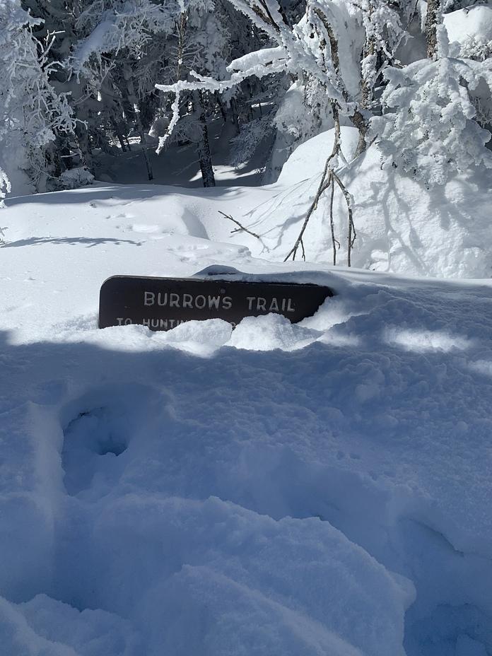 Burrows trail, Camels Hump