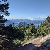 Another beautiful Dog hike, Dog Mountain