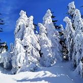 W drodze na Śnieżnik, Králický Sněžník