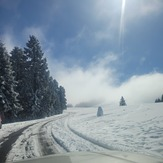 Snowy road, Marys Peak