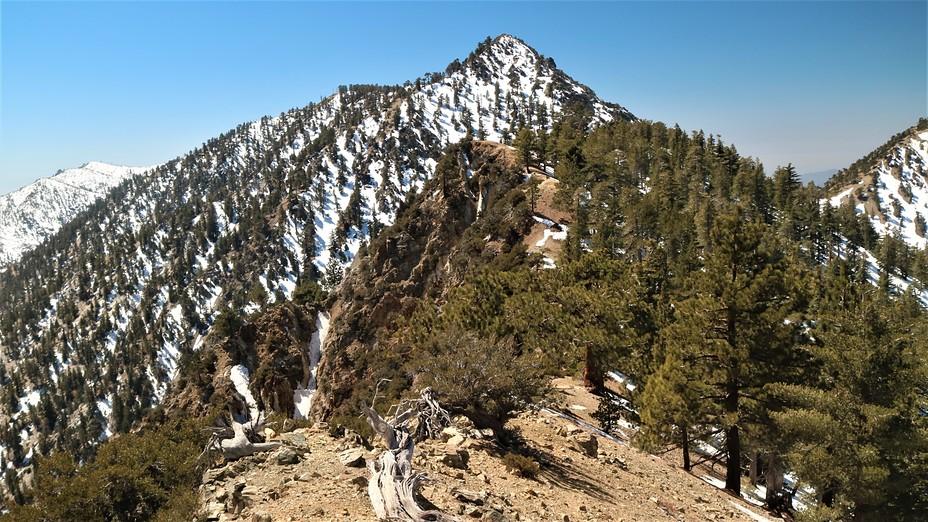 Telegraph from the NE ridge, Telegraph Peak (California)